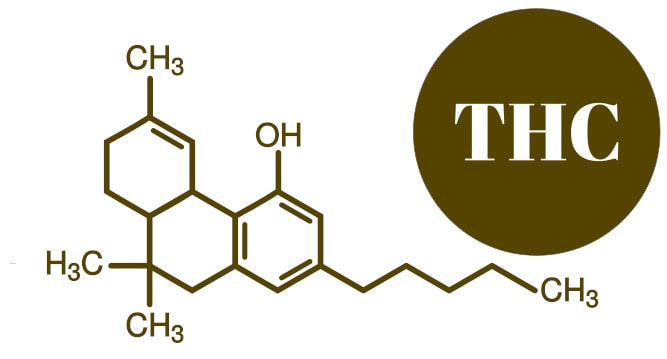 molecule de THC